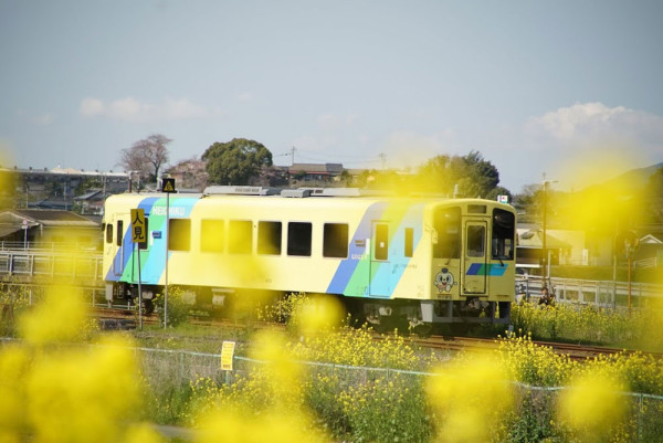 田川 へいちく 写真