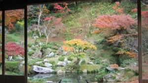 藤江氏 魚楽園 紅葉