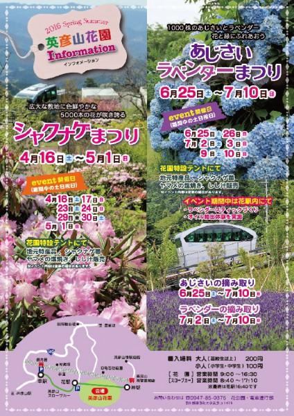 ajisai-lavender