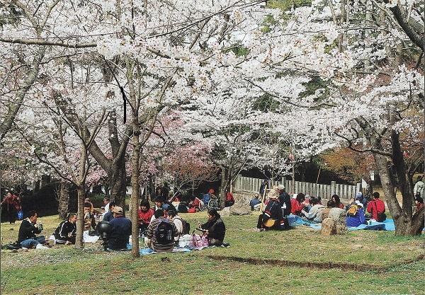 春のにぎわい (2)
