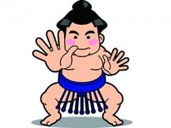 相撲部屋見学